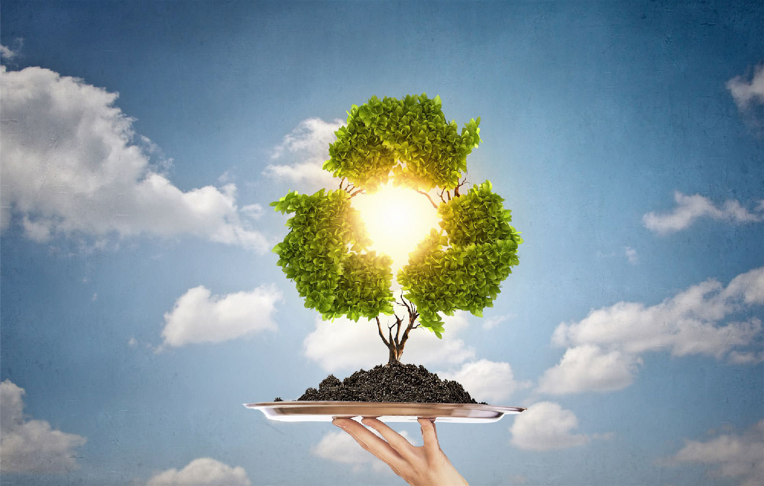 Demand for Bioplastics Continues to Follow Immense Growth Trajectory